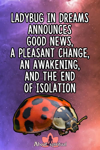 What is ladybug spiritual meaning